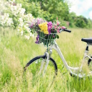 incentivi bici elettrica
